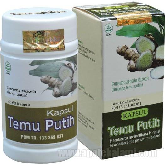 herbal temu putih