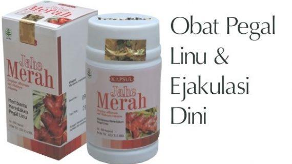 Obat Herbal Jahe Merah Mengobati Pegal Linu