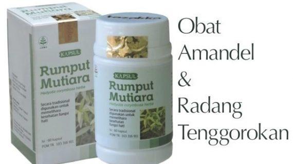 Obat Herbal Rumput Mutiara Memelihara Fungsi Hati