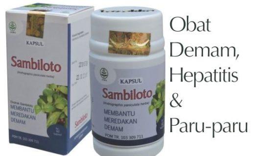 Obat Herbal Sambiloto Meredakan Demam