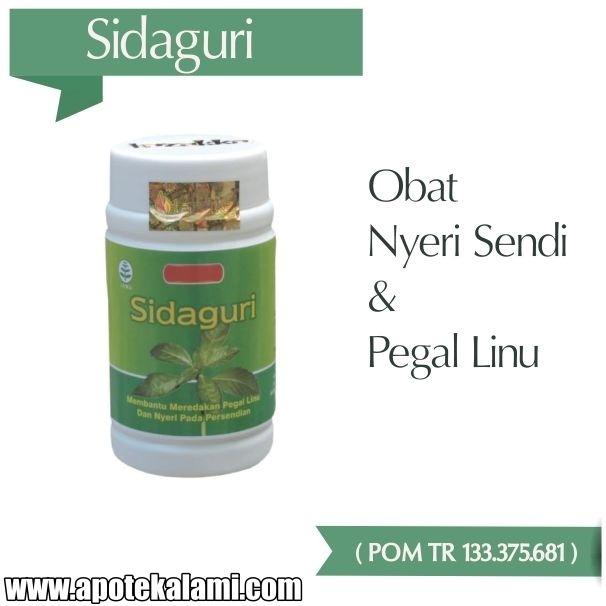 obat herbal sidaguri