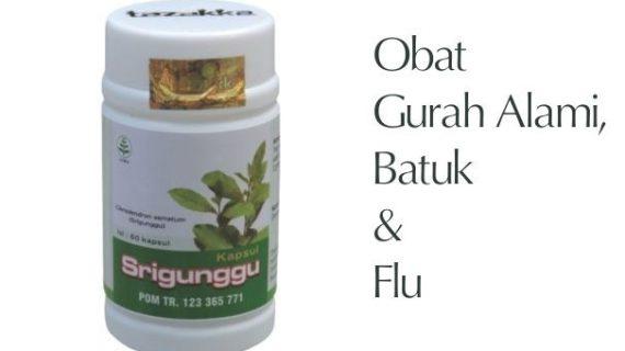 Obat Herbal Srigunggu Mengobati Gangguan Pernafasan