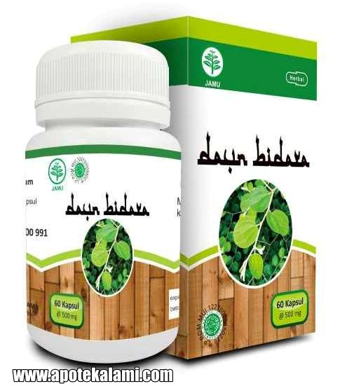 obat herbal daun bidara