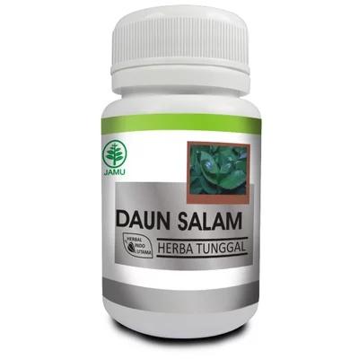 obat herbal daun salam