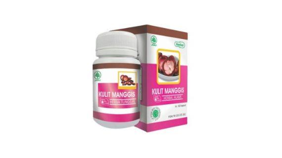 Obat Herbal Kulit Manggis Menghilangkan Jerawat