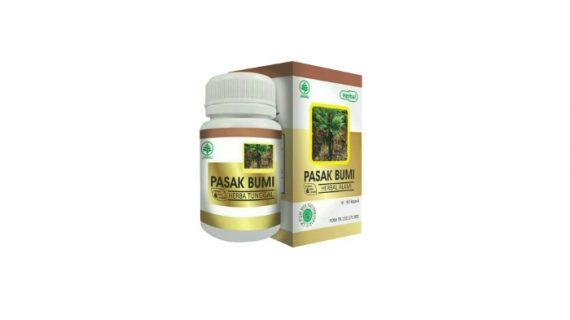 Obat Herbal Pasak Bumi Penambah Stamina Pria