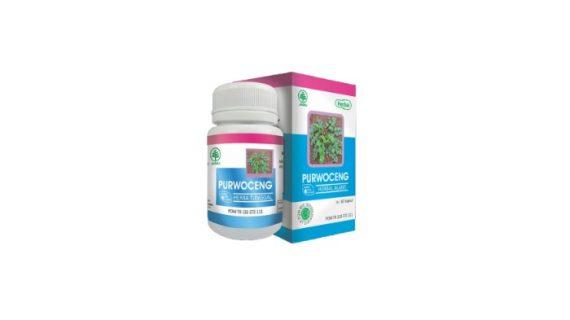 Obat Herbal Purwoceng Meningkatkan Stamina Pria