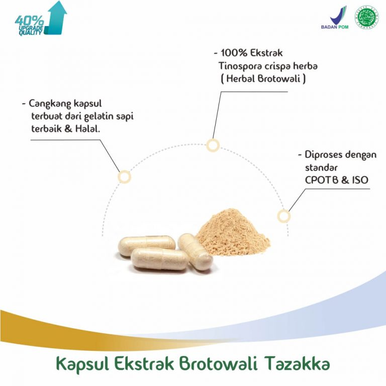 herbal brotowali