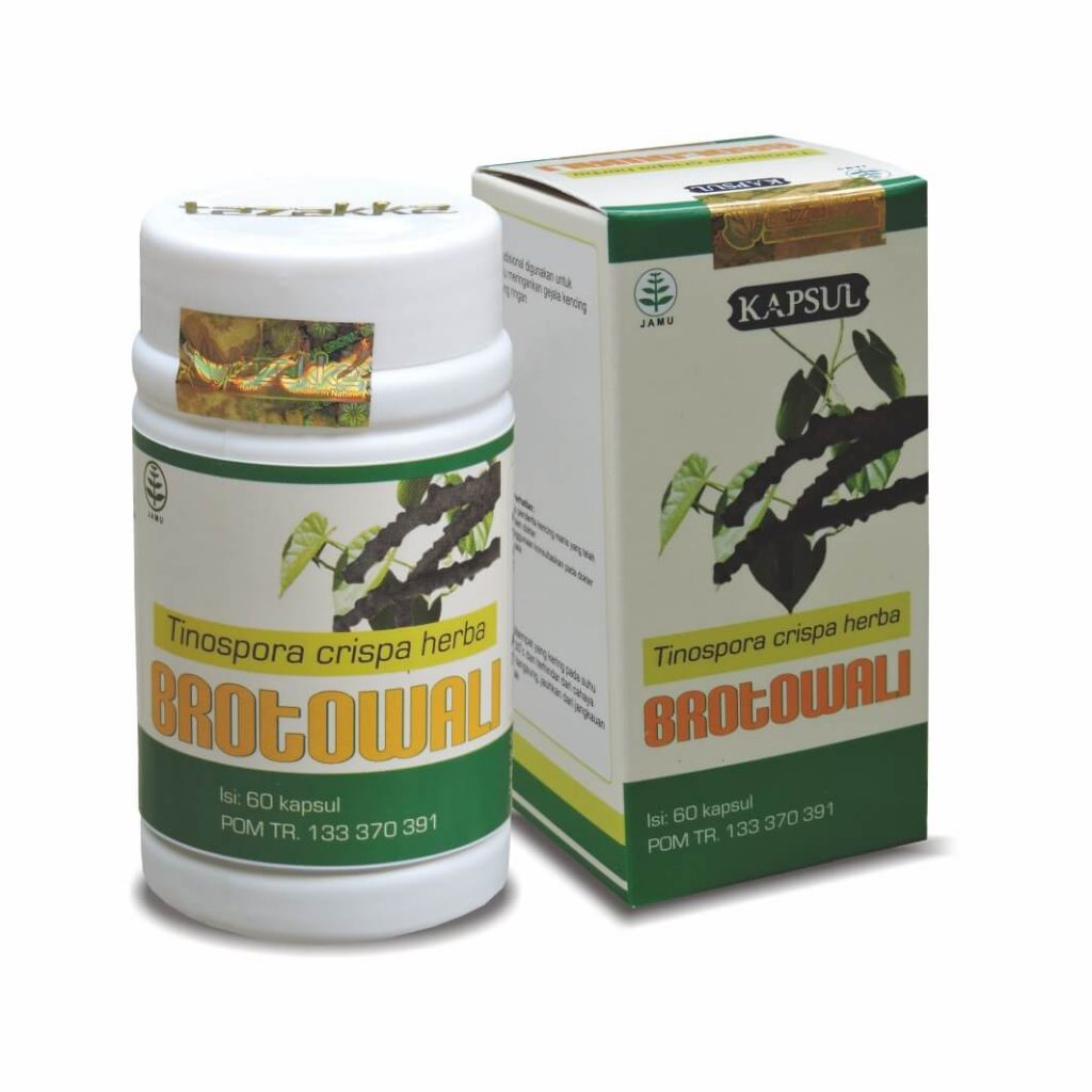 kapsul herbal brotowali
