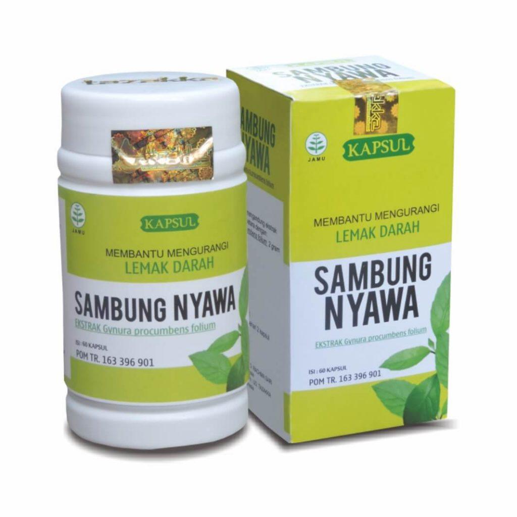 obat herbal sambung nyawa