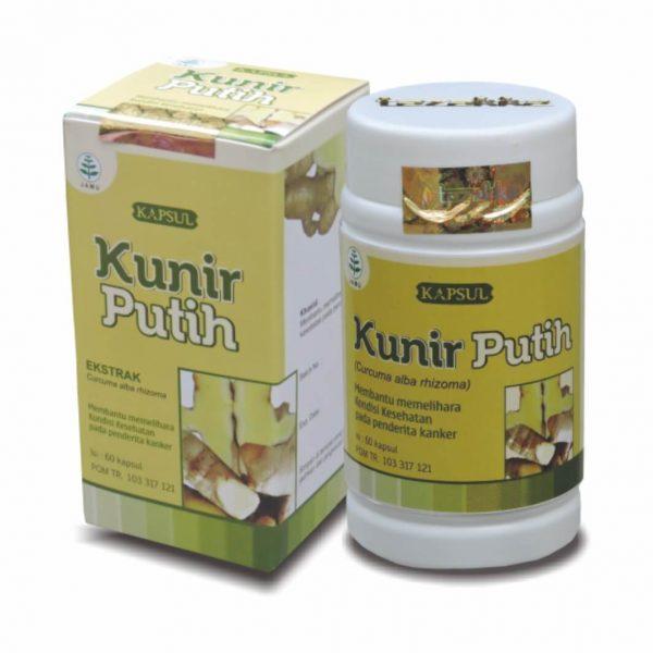 obat herbal kunir putih