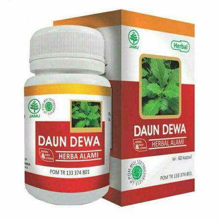 obat herbal daun dewa
