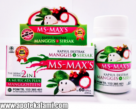 obat herbal ms max