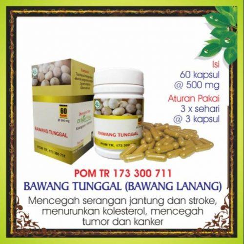 obat herbal daun kelor